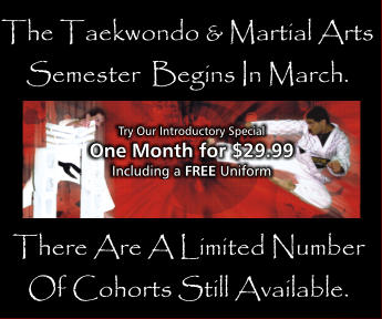 There Are A Limited Number Of Cohorts Still Available. The Taekwondo & Martial Arts Semester  Begins In March.